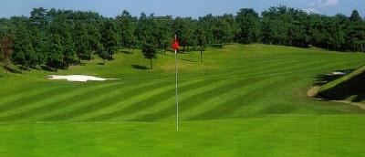 ゴルフ場用肥料の製造販売