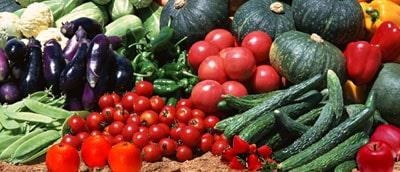 各種肥料の製造卸・販売